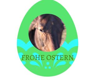 osterloewe