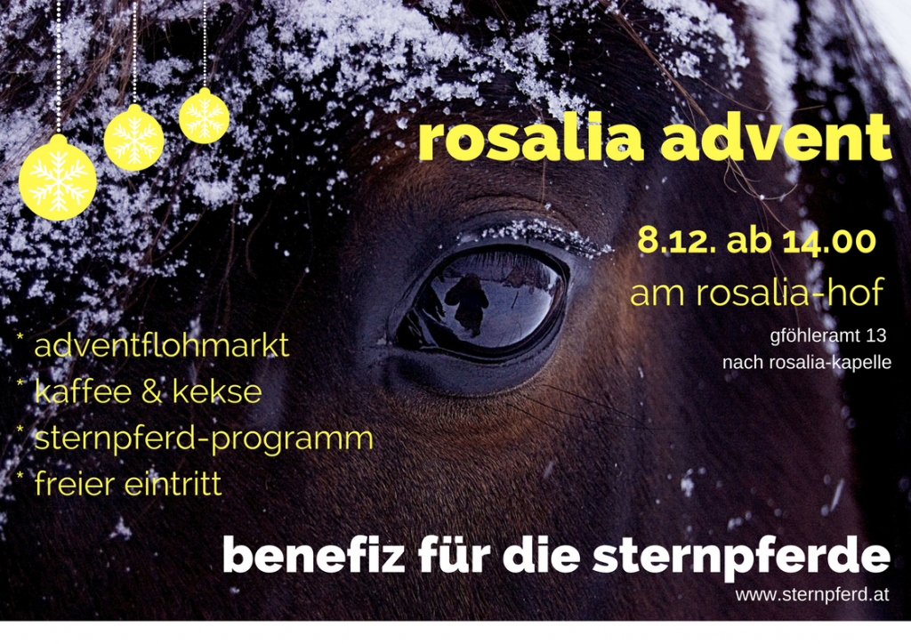 rosalia-advent